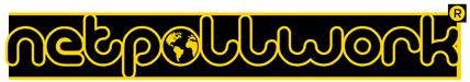 Netpollwork.it il portale che ordina il tuo web in una landing page e ti fa ritrovare sui motori di ricerca tramite parole chiave